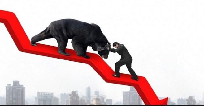 बाइस कम्पनीको शेयरमूल्य ३ प्रतिशतले घट्यो, कुनैपनि कम्पनीको बढेन