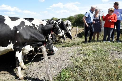 'साना किसान भएको देशमा कृषिमा वैदेशिक लगानी ठूलाले साना माछालाई खाएजस्तो हुन्छ'–पूर्व गभर्नर क्षेत्री